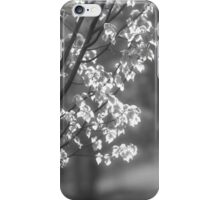 Leaves in Light 1 iPhone Case/Skin