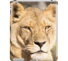 629 lioness iPad Case/Skin