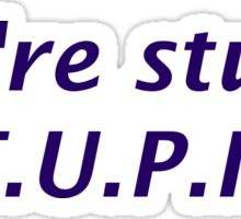 You're Stupid Sticker
