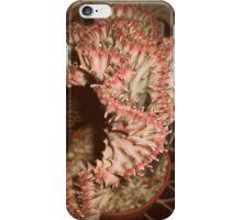 Vintage Coral Cactus iPhone Case/Skin