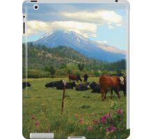 Mt. Shasta Meadow iPad Case/Skin