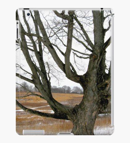 Wyeth Country iPad Case/Skin