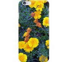 Beautiful yellow flowers texture. iPhone Case/Skin