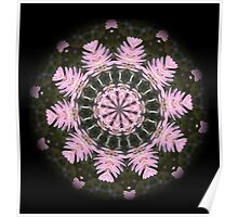 Pink Protea Wheels Poster