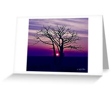 Boab Sunset. Derby. West Kimberley region of Western Australia. Greeting Card