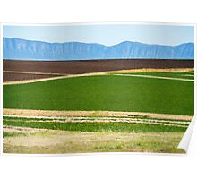 Country agricultural and farming field Poster