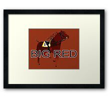 Big Red the World's Greatest Racehorse Framed Print