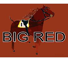 Big Red the World's Greatest Racehorse Photographic Print