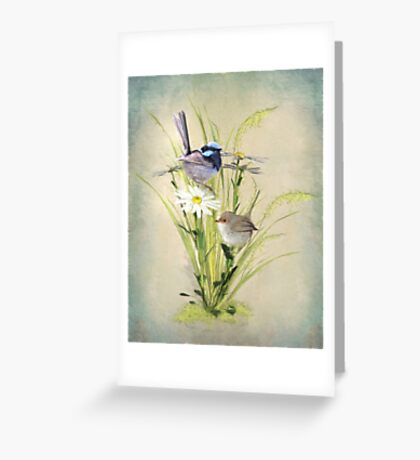 Little Fairy Wrens Greeting Card