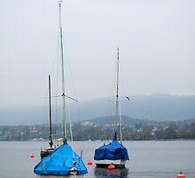 Misty Day on Lake Zurich by Tiffany Dryburgh