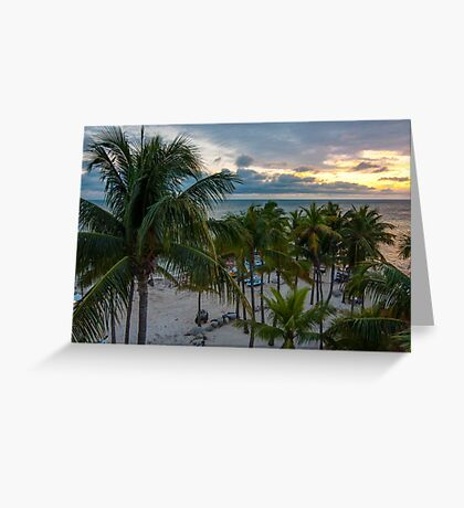 Palms at Key West Greeting Card