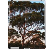 Salmon Gum, Goldfields WA Australia iPad Case/Skin