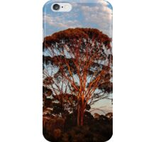 Red Trees, Goldfields WA Australia iPhone Case/Skin