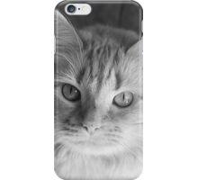 Sun Kitteh iPhone Case/Skin