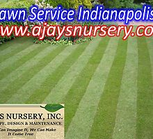 Incredible Landscape Design - Expert Lawn Care - Low Cost Outdoor Lighting by jonesthomas
