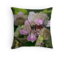 6 - Insetto Throw Pillow
