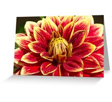 9 - Fiore Greeting Card