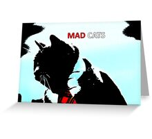 Mad Cats  Greeting Card