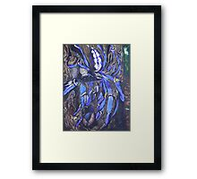 Poecilotheria metallica Framed Print