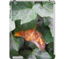 Nearly a butterfly iPad Case/Skin
