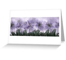 Floral home decoration. Agapanthus 7 Greeting Card