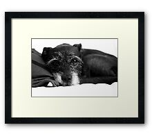 RUBY Framed Print