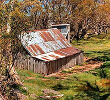 Wallace Hut by Peter Hocking