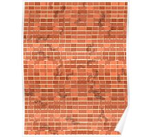 Pattern 022 FootPrints on red Bricks Poster