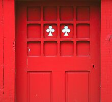 Red Door with Two White Flowers by aurielaki