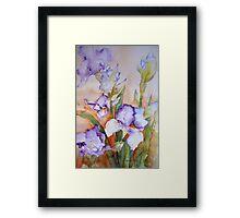 lavender Iris Framed Print