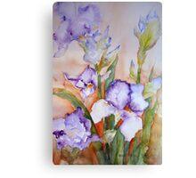 lavender Iris Canvas Print