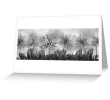 Floral home decoration. Agapanthus 12 Greeting Card