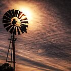 My sun burnt country by mellosphoto