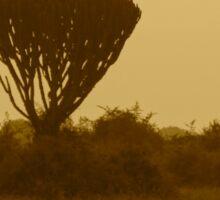 Kenya wildlife in QENP - antique Sticker