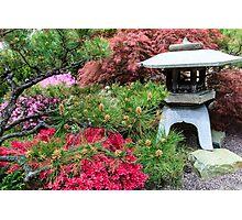 Japanese Garden Lantern Photographic Print