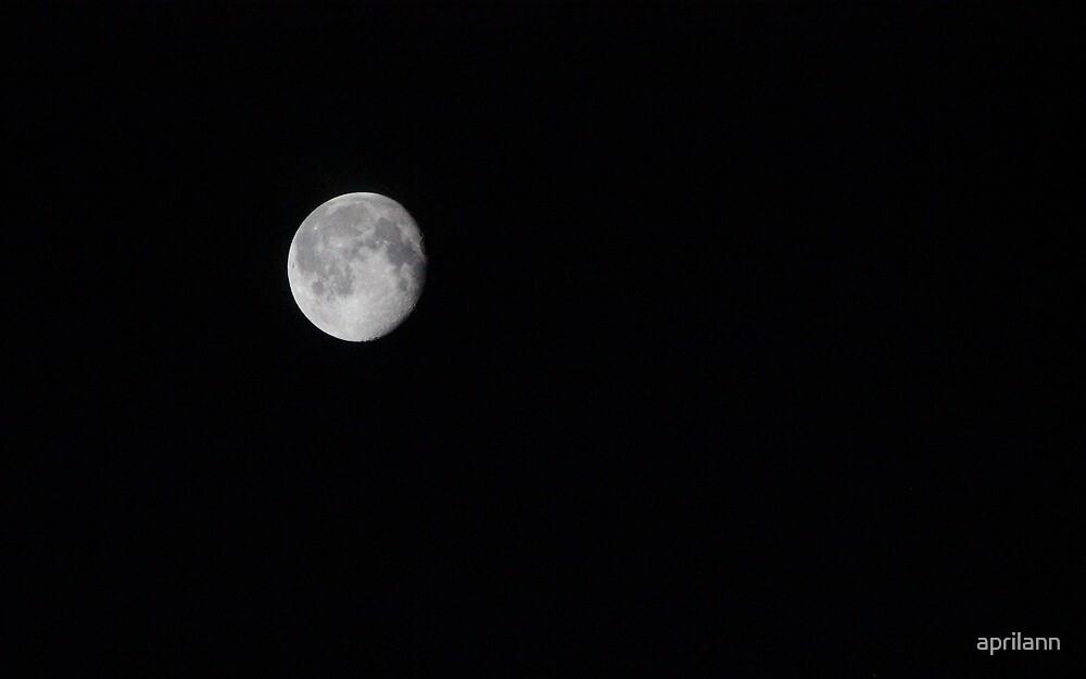 A Texas Moon by aprilann