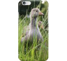 Goslings At the River iPhone Case/Skin