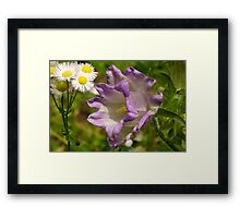 Is There A Class System in The Garden? Framed Print
