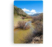 Mineral Creek 1  Canvas Print
