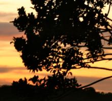 The sunset glows on Puerto Narino, Amazon River Sticker