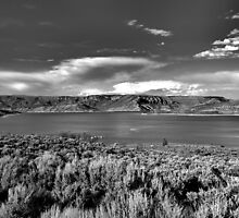 Blue Mesa Reservoir West End 1 BW by Robert Meyers-Lussier