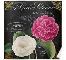 Fleur du Jour Camellia Poster