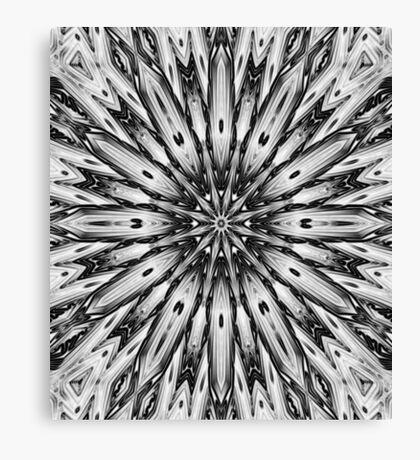 binary spear Canvas Print