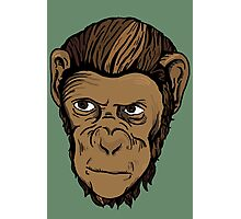 CARTOON MONKEY Photographic Print