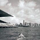Kayaking at Miami Marine Stadium by Bill Wetmore