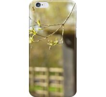 Winter is over 4 iPhone Case/Skin