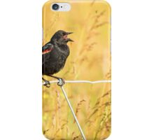 male red winged blackbird iPhone Case/Skin