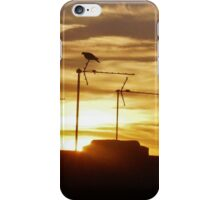 Urban Sunset iPhone Case/Skin