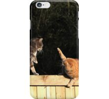 Cat fight iPhone Case/Skin