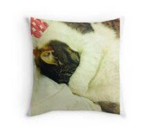 Grumpy Sleepy Cat Throw Pillow